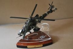 Denel scale Rooivalk (camo) award